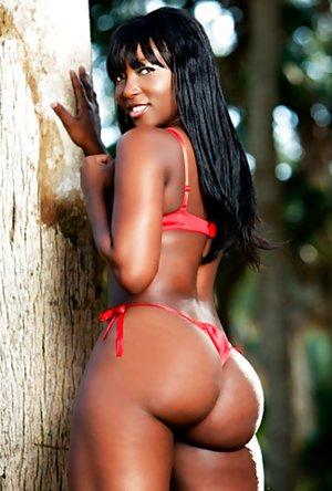 XXX Black Ass Pictures